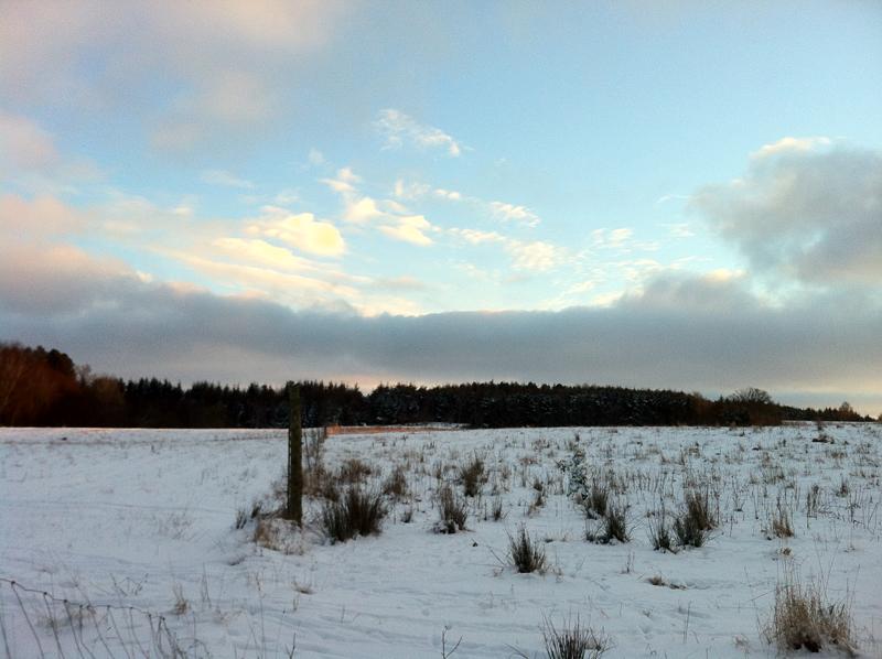 Realtree APS - Härkila Kiruna